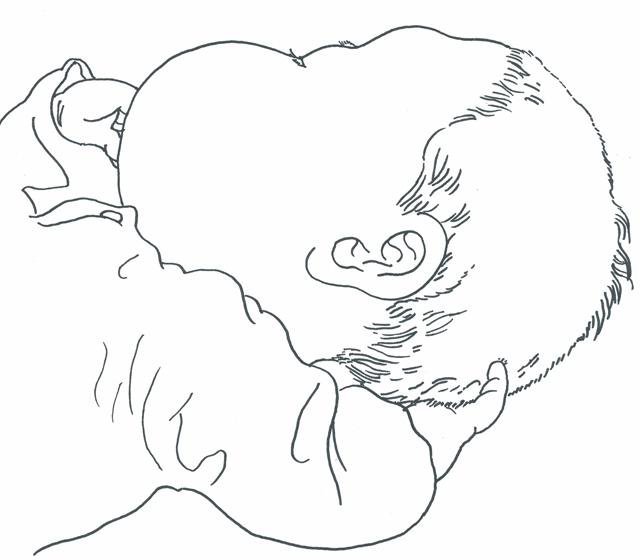 baby_2015_04_web